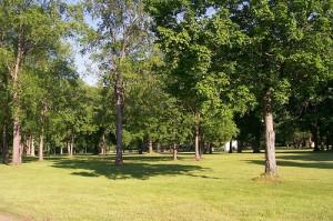 Gargoyle Park In Olean NY